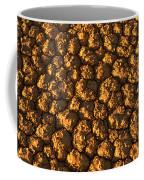 Dry Lakebed, Nevada Coffee Mug