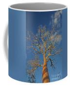 dry season in Madagascar Coffee Mug