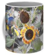 Dry Sunflowers Coffee Mug
