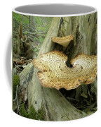 Dryads Saddle Bracket Fungi - Polyporus Squamosus Coffee Mug