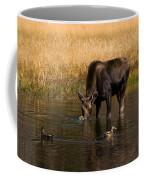 Duck Duck Moose Coffee Mug
