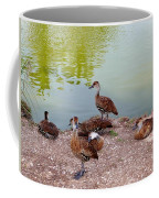 Duck Pond Coffee Mug