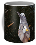 Duck Portrait Coffee Mug