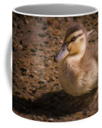 Duckling Coffee Mug