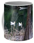Ducks And Turtles Coffee Mug