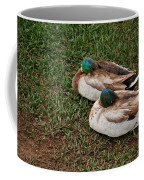 Ducks At Rest Coffee Mug