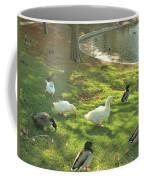 Ducks At The Park Coffee Mug