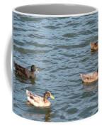 Ducks On Spaulding Pond Coffee Mug