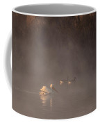 Ducks Pelican Birds On A Foggy Lake Nature Fine Photography Print  Coffee Mug