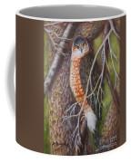 Red Shoulder Hawk Coffee Mug