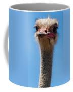 Duh Coffee Mug by Jean Noren