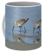 Dunlins Coffee Mug