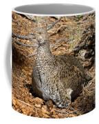 Dusky Grouse With Chicks Coffee Mug