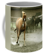 Dusty Paddock Coffee Mug