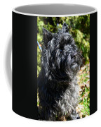 Dusty Coffee Mug