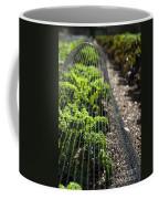 Dwarf Green Curled Coffee Mug