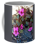 Dwarf Purple Monkeyflower In Lava Beds Nmon-ca Coffee Mug