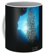Dwarf Sweepers In Cave Entrance Coffee Mug