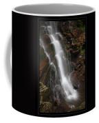 Dynamic Descent Coffee Mug