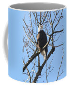 Bald Eagle Sunny Perch Coffee Mug