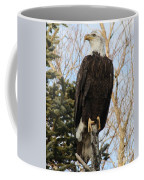Eagle 1991a Coffee Mug