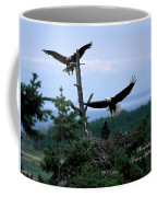 Eagle 3 Coffee Mug