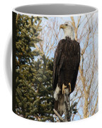 Eagle 5 Coffee Mug