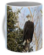 Eagle 6 Coffee Mug