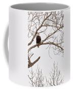 Eagle In Tree Coffee Mug