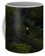 Eagle In White Pine Coffee Mug