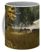 Eagle Lake Sunrise Coffee Mug