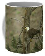 Eagle On A Tree Branch Coffee Mug