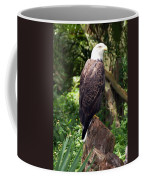 Eagle Portrait Coffee Mug