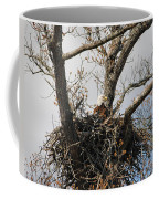 Eagles Watchful Eye 2 Coffee Mug