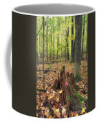 Early Autumn Woods Coffee Mug
