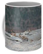 Early Birds On The Edge Coffee Mug