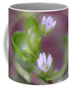 Early Blossoms  Coffee Mug