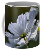 Early Dawns Light On Fall Flowers 02 Coffee Mug