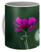 Early Dawns Light On Fall Flowers 03 Coffee Mug