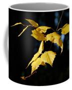 Early Fall Of  Downy Birch Coffee Mug