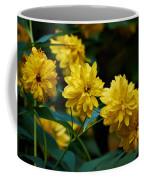 Early Fall Of Goldenglow Coffee Mug