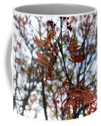 Early Fall Of Rowan Coffee Mug
