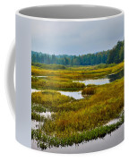 Early Fall On The Moose River - Old Forge New York Coffee Mug by David Patterson