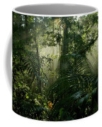 Early Morning Light In The Rain Forest Coffee Mug