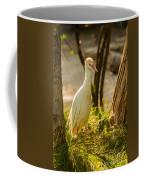 Early Morning Light On The Bird Coffee Mug