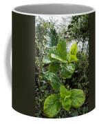 Early Rain  Coffee Mug