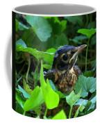 Early Robinhood Coffee Mug