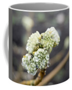 Early Spring 2 Coffee Mug