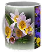 Early Spring Blossoms Coffee Mug
