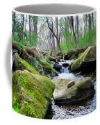 Earthen Falls Coffee Mug